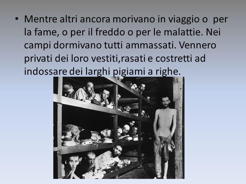 Mentre altri ancora morivano in viaggio o per la fame, o per il freddo o per le malattie. Nei campi dormivano tutti ammassati. Vennero privati dei lor