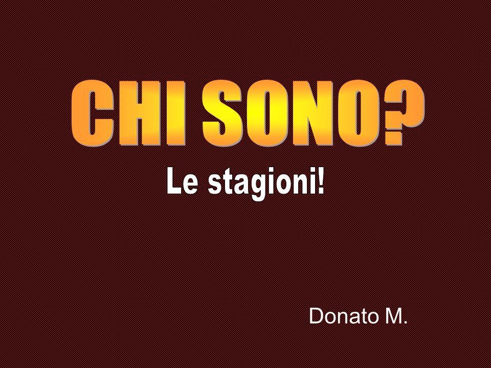 Donato M.