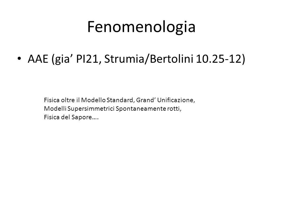 Fenomenologia AAE (gia PI21, Strumia/Bertolini 10.25-12) Fisica oltre il Modello Standard, Grand Unificazione, Modelli Supersimmetrici Spontaneamente rotti, Fisica del Sapore….