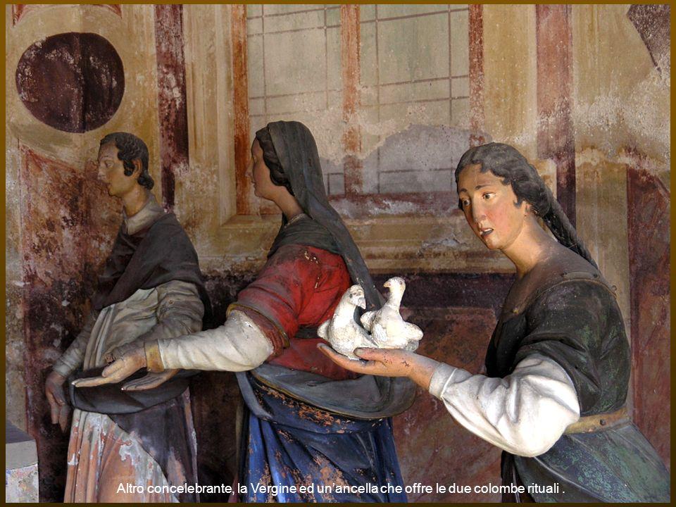 Altro concelebrante, la Vergine ed unancella che offre le due colombe rituali.