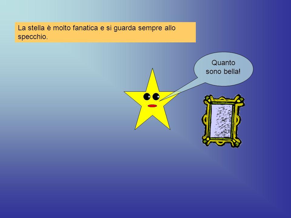 Quanto sono bella! La stella è molto fanatica e si guarda sempre allo specchio.
