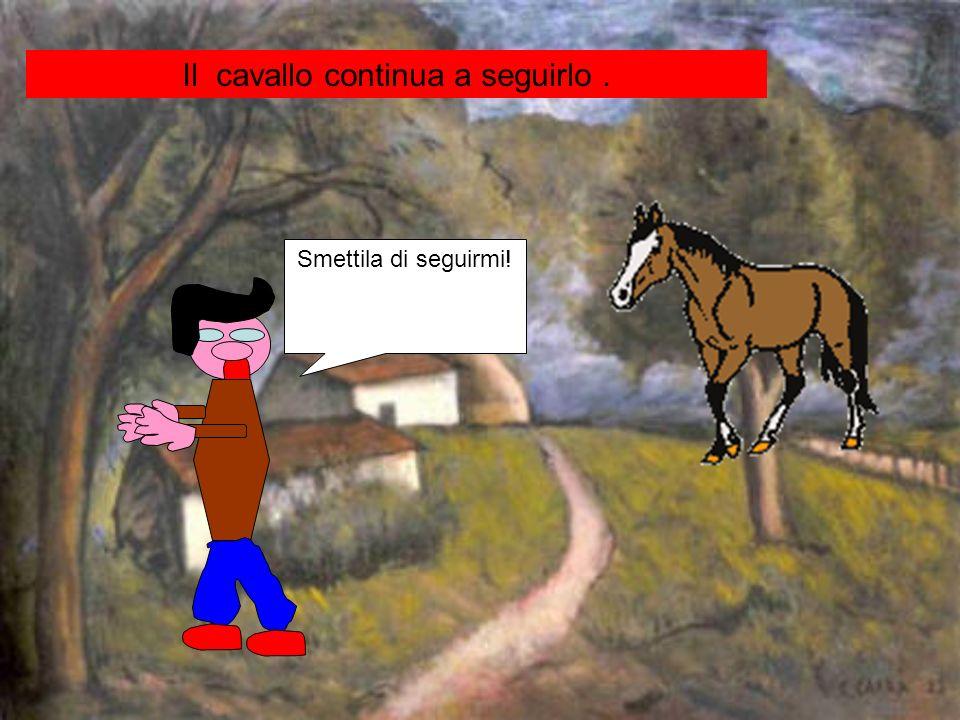 Smettila di seguirmi! Il cavallo continua a seguirlo.