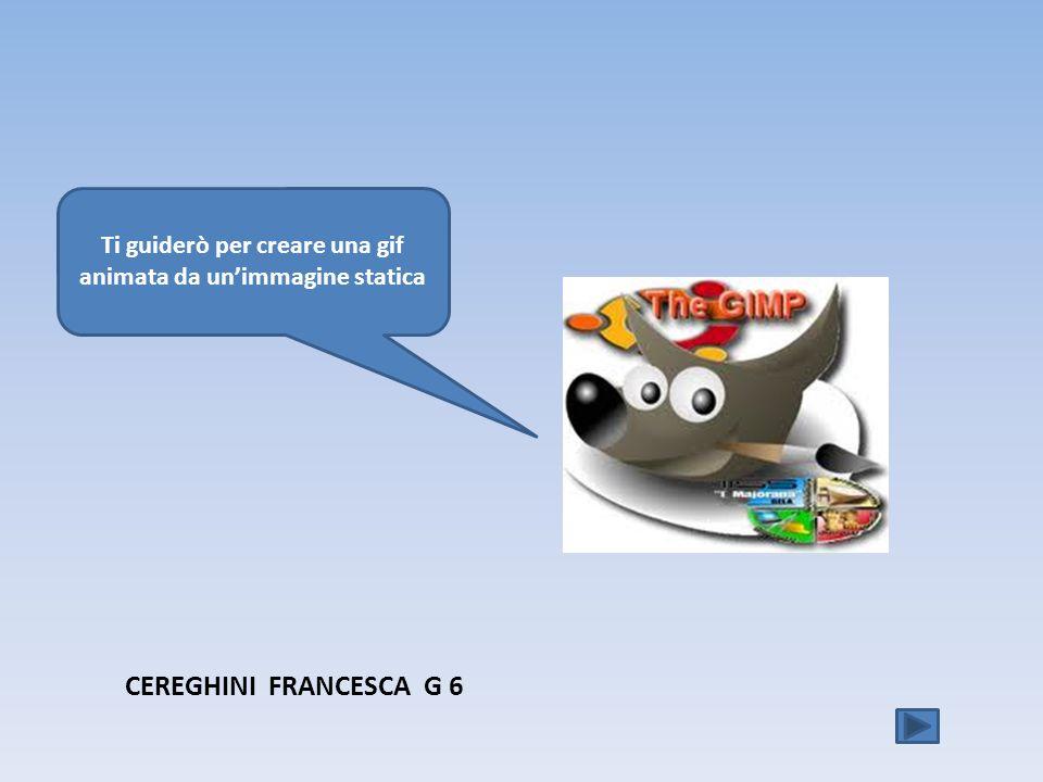 Ti guiderò per creare una gif animata da unimmagine statica CEREGHINI FRANCESCA G 6
