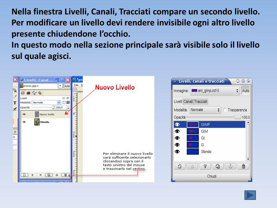Nella finestra Livelli, Canali, Tracciati compare un secondo livello.