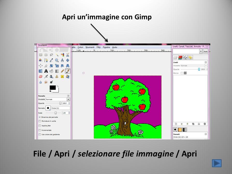 Apri unimmagine con Gimp File / Apri / selezionare file immagine / Apri