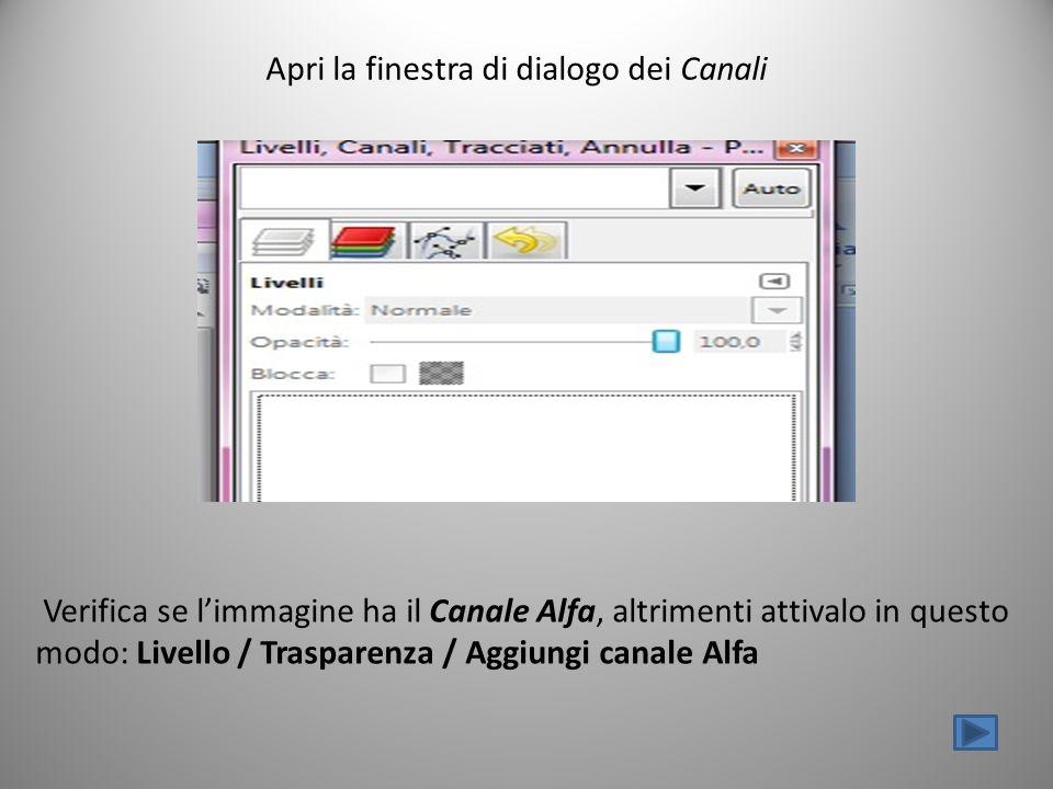 Apri la finestra di dialogo dei Canali Verifica se limmagine ha il Canale Alfa, altrimenti attivalo in questo modo: Livello / Trasparenza / Aggiungi canale Alfa