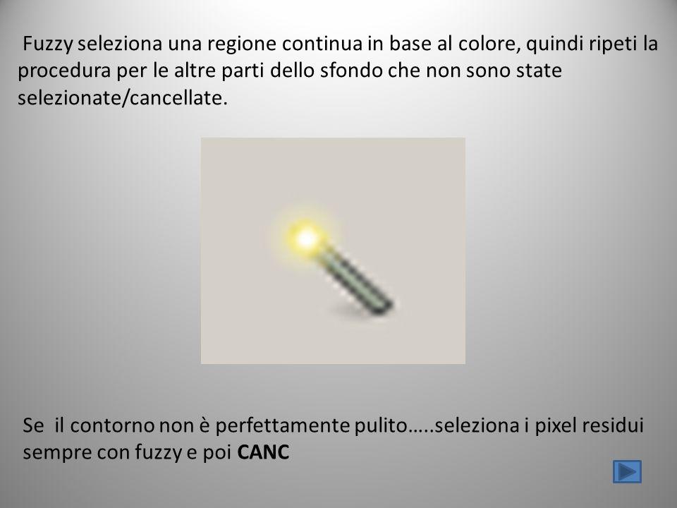 Fuzzy seleziona una regione continua in base al colore, quindi ripeti la procedura per le altre parti dello sfondo che non sono state selezionate/canc