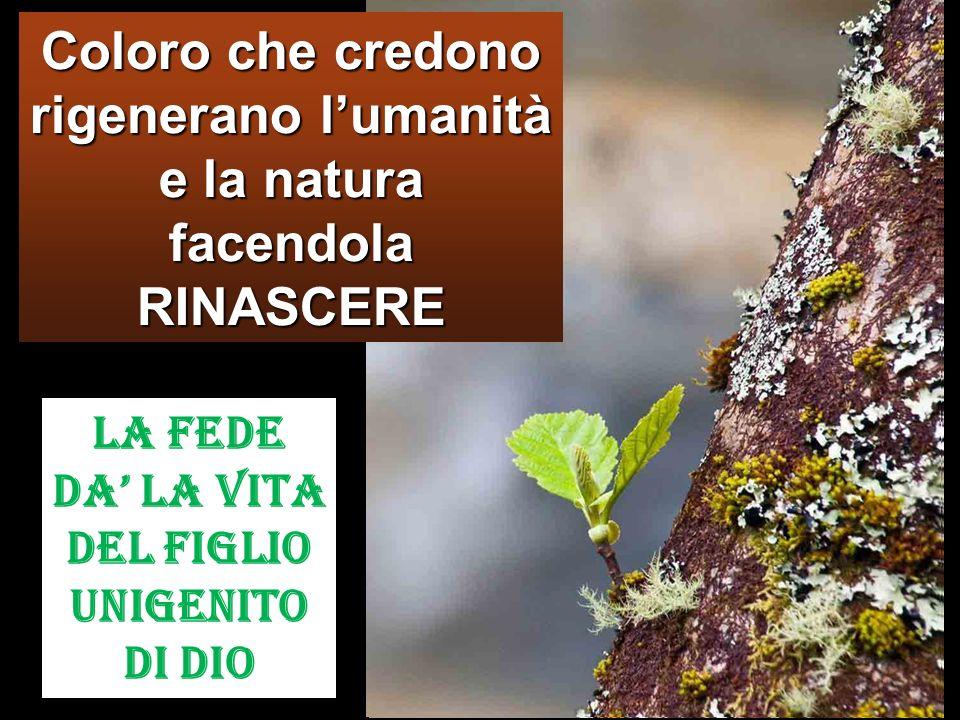 Coloro che credono rigenerano lumanità e la natura facendola RINASCERE La FEDE da la Vita del Figlio Unigenito di Dio