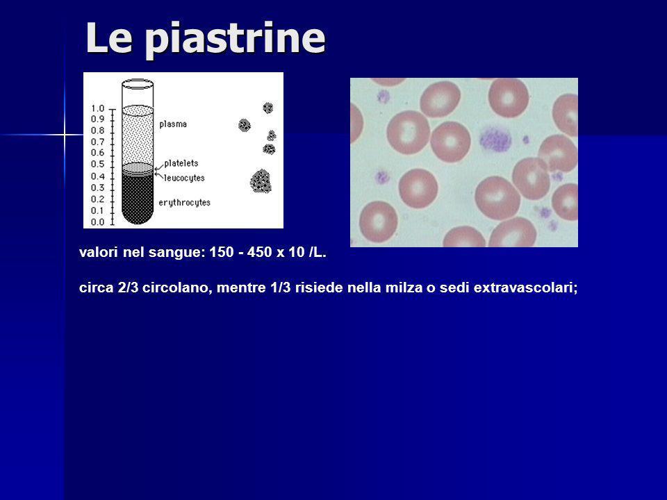 Le piastrine valori nel sangue: 150 - 450 x 10 /L. circa 2/3 circolano, mentre 1/3 risiede nella milza o sedi extravascolari;