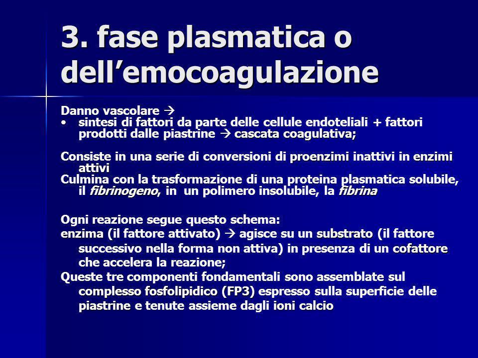 3. fase plasmatica o dellemocoagulazione Danno vascolare cascata coagulativa;sintesi di fattori da parte delle cellule endoteliali + fattori prodotti