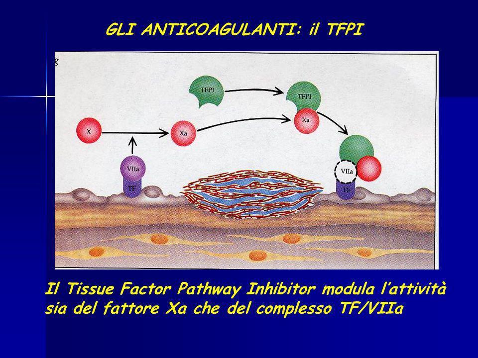 GLI ANTICOAGULANTI: il TFPI Il Tissue Factor Pathway Inhibitor modula lattività sia del fattore Xa che del complesso TF/VIIa