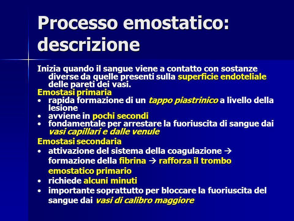 Processo emostatico: descrizione superficie endoteliale Inizia quando il sangue viene a contatto con sostanze diverse da quelle presenti sulla superfi