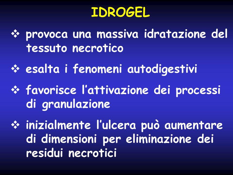 IDROGEL provoca una massiva idratazione del tessuto necrotico esalta i fenomeni autodigestivi favorisce lattivazione dei processi di granulazione iniz
