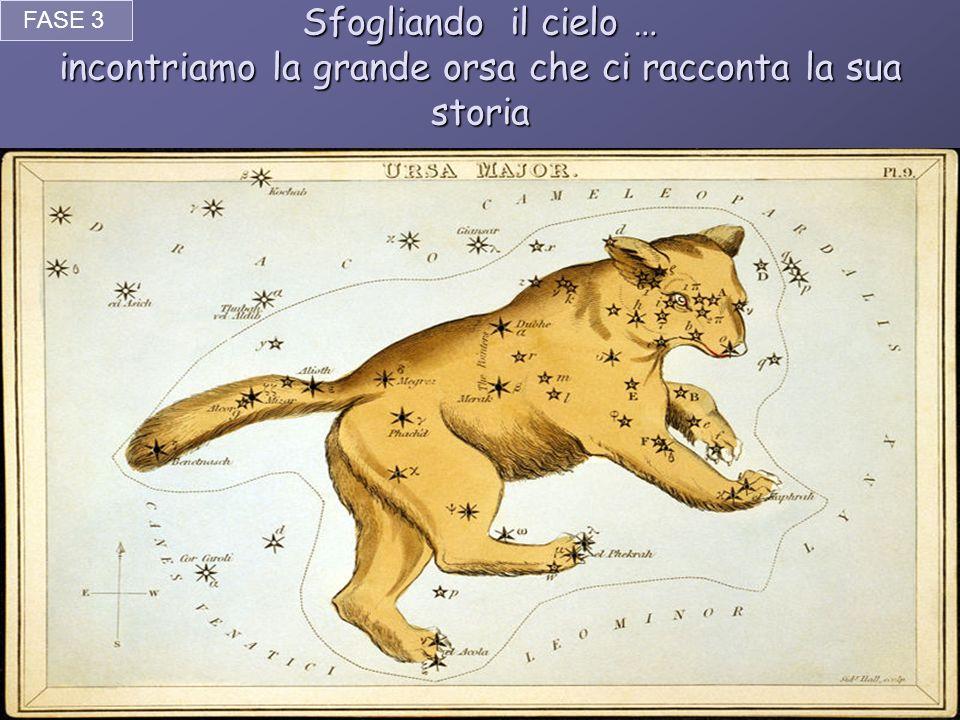 Sfogliando il cielo … incontriamo la grande orsa che ci racconta la sua storia FASE 3