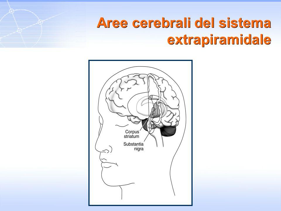 Aree cerebrali del sistema extrapiramidale