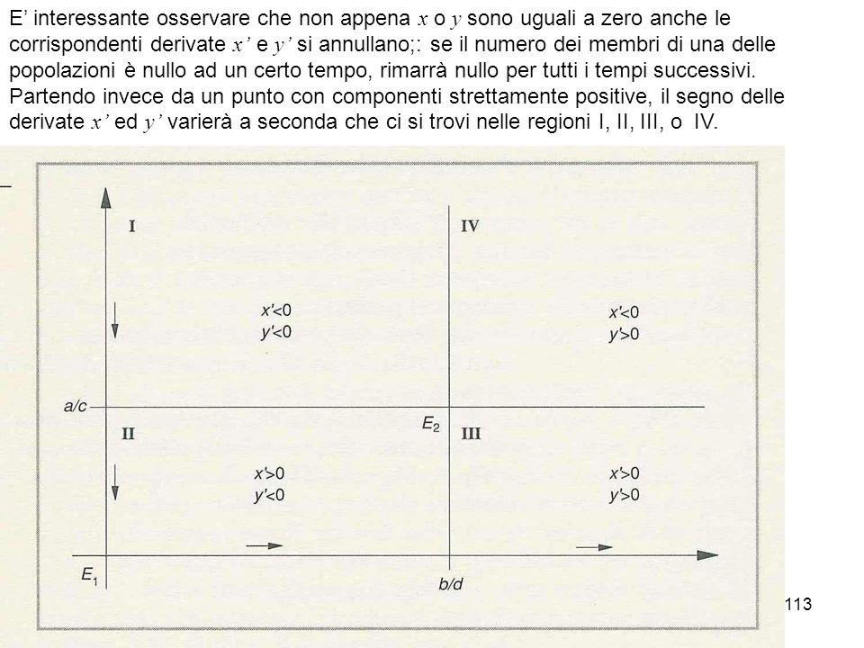 113 E interessante osservare che non appena x o y sono uguali a zero anche le corrispondenti derivate x e y si annullano;: se il numero dei membri di