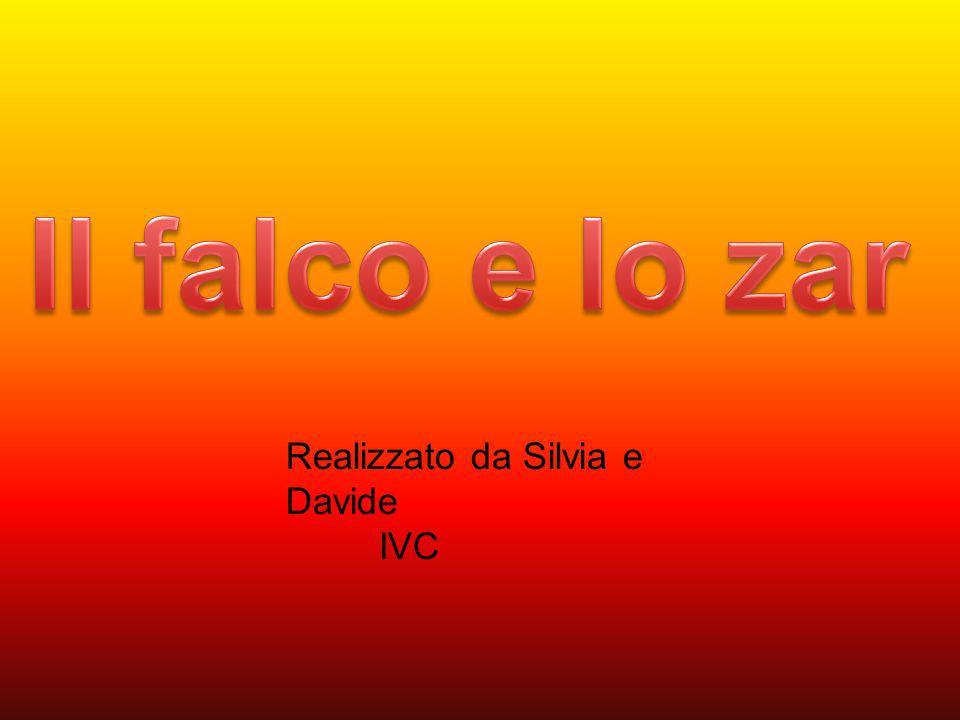 Realizzato da Silvia e Davide IVC