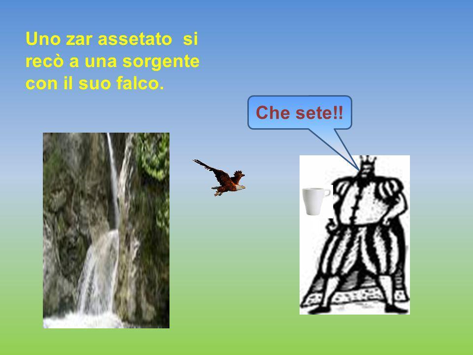 Uno zar assetato si recò a una sorgente con il suo falco. Che sete!!
