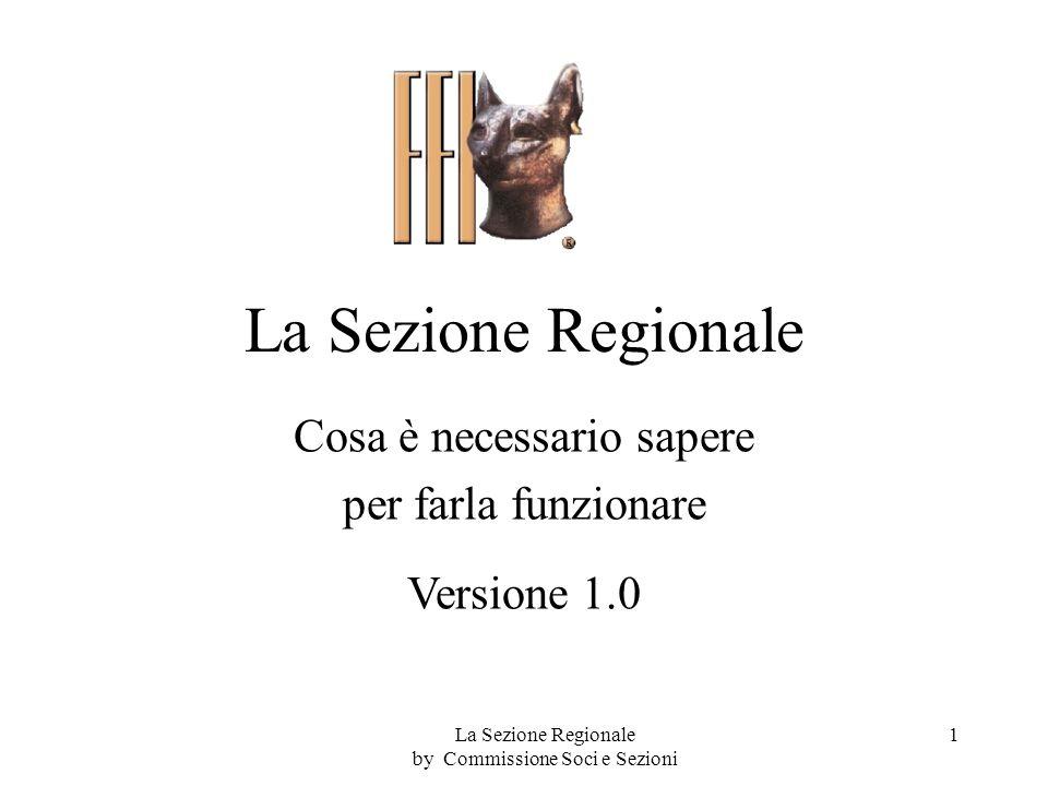 La Sezione Regionale Cosa è necessario sapere per farla funzionare Versione 1.0 1La Sezione Regionale by Commissione Soci e Sezioni