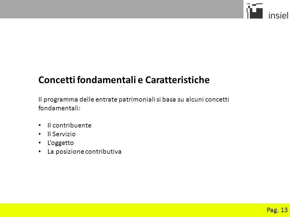 Pag. 13 Concetti fondamentali e Caratteristiche Il programma delle entrate patrimoniali si basa su alcuni concetti fondamentali: Il contribuente Il Se
