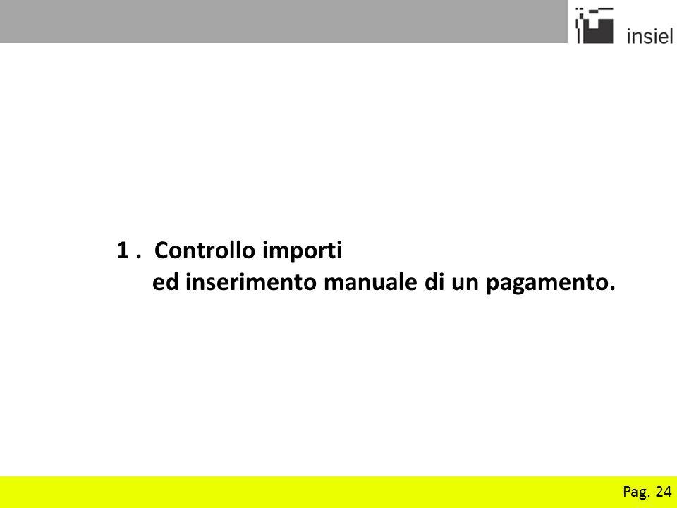 Pag. 24 1. Controllo importi ed inserimento manuale di un pagamento.