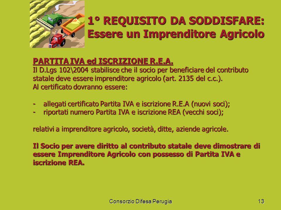 Consorzio Difesa Perugia13 1° REQUISITO DA SODDISFARE: Essere un Imprenditore Agricolo PARTITA IVA ed ISCRIZIONE R.E.A. Il D.Lgs 102\2004 stabilisce c