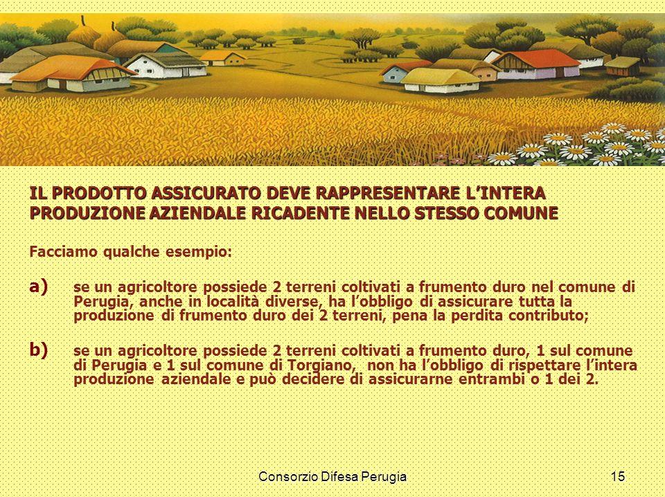 Consorzio Difesa Perugia15 IL PRODOTTO ASSICURATO DEVE RAPPRESENTARE LINTERA PRODUZIONE AZIENDALE RICADENTE NELLO STESSO COMUNE Facciamo qualche esemp
