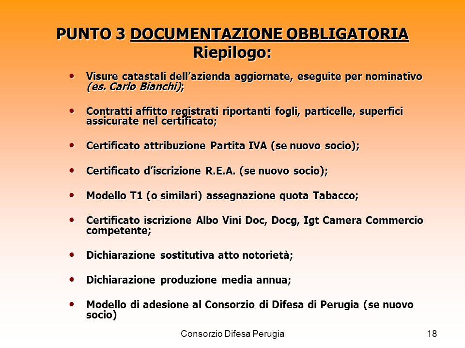 Consorzio Difesa Perugia18 PUNTO 3 DOCUMENTAZIONE OBBLIGATORIA Riepilogo: Visure catastali dellazienda aggiornate, eseguite per nominativo (es. Carlo