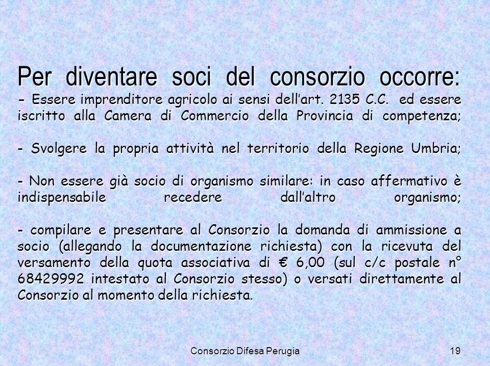 Consorzio Difesa Perugia19 Per diventare soci del consorzio occorre: - Essere imprenditore agricolo ai sensi dellart. 2135 C.C. ed essere iscritto all