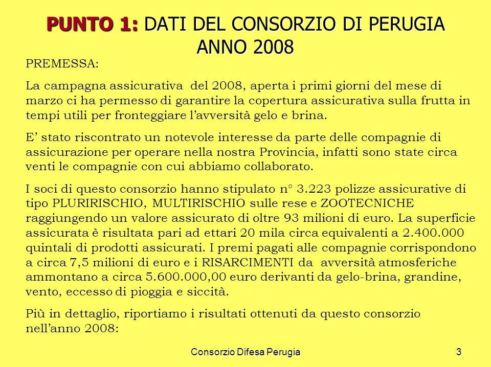 Consorzio Difesa Perugia3 PREMESSA: La campagna assicurativa del 2008, aperta i primi giorni del mese di marzo ci ha permesso di garantire la copertur