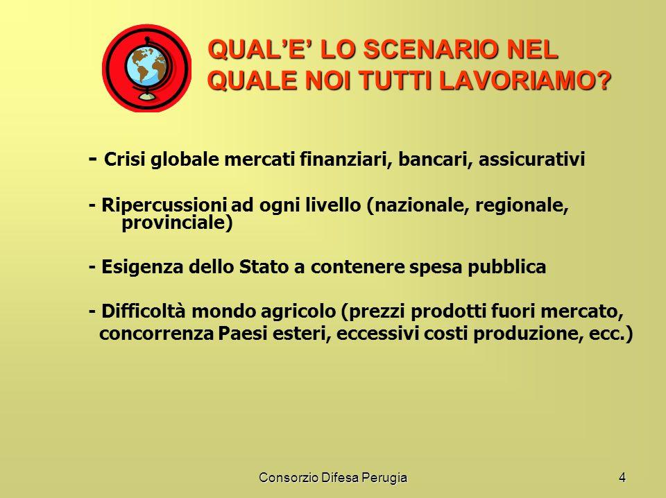 Consorzio Difesa Perugia4 QUALE LO SCENARIO NEL QUALE NOI TUTTI LAVORIAMO? QUALE LO SCENARIO NEL QUALE NOI TUTTI LAVORIAMO? - Crisi globale mercati fi
