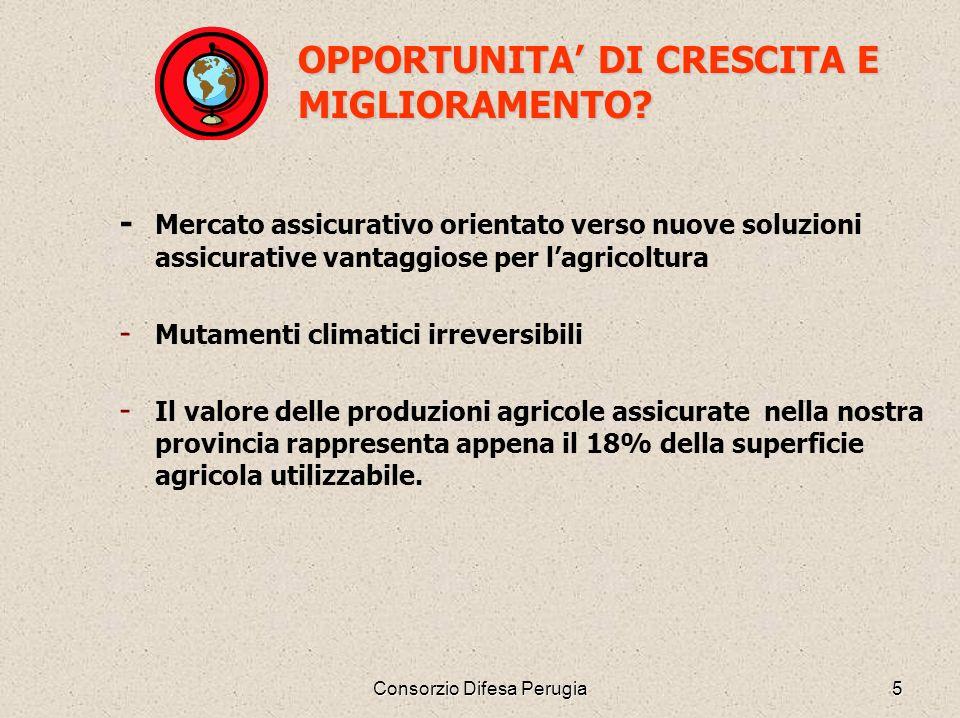 Consorzio Difesa Perugia5 OPPORTUNITA DI CRESCITA E MIGLIORAMENTO? - Mercato assicurativo orientato verso nuove soluzioni assicurative vantaggiose per
