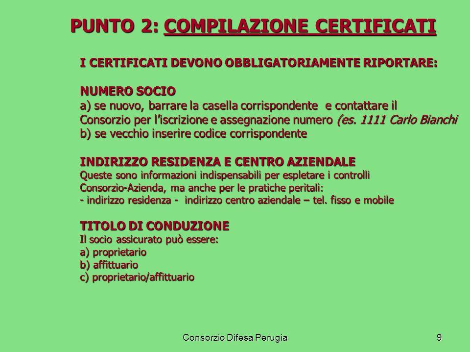 Consorzio Difesa Perugia10 PUNTO 2: COMPILAZIONE CERTIFICATI PUNTO 2: COMPILAZIONE CERTIFICATI I CERTIFICATI DEVONO OBBLIGATORIAMENTE RIPORTARE: PREZZI MERCURIALI PRODOTTI PREZZI MERCURIALI PRODOTTI Forniti dal Consorzio alle Agenzie a inizio Campagna DATA DI NOTIFICA DATA DI NOTIFICA La data di notifica ai fini della decorrenza della garanzia (grandine, pluririschio, multirischio) FIRMA E TIMBRO AGENZIA FIRMA E TIMBRO AGENZIA LAgente deve apporre sul certificato timbro e firma.