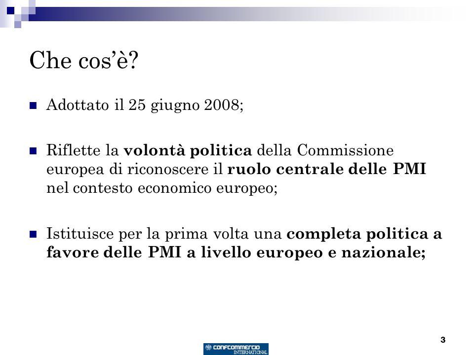 3 Che cosè? Adottato il 25 giugno 2008; Riflette la volontà politica della Commissione europea di riconoscere il ruolo centrale delle PMI nel contesto