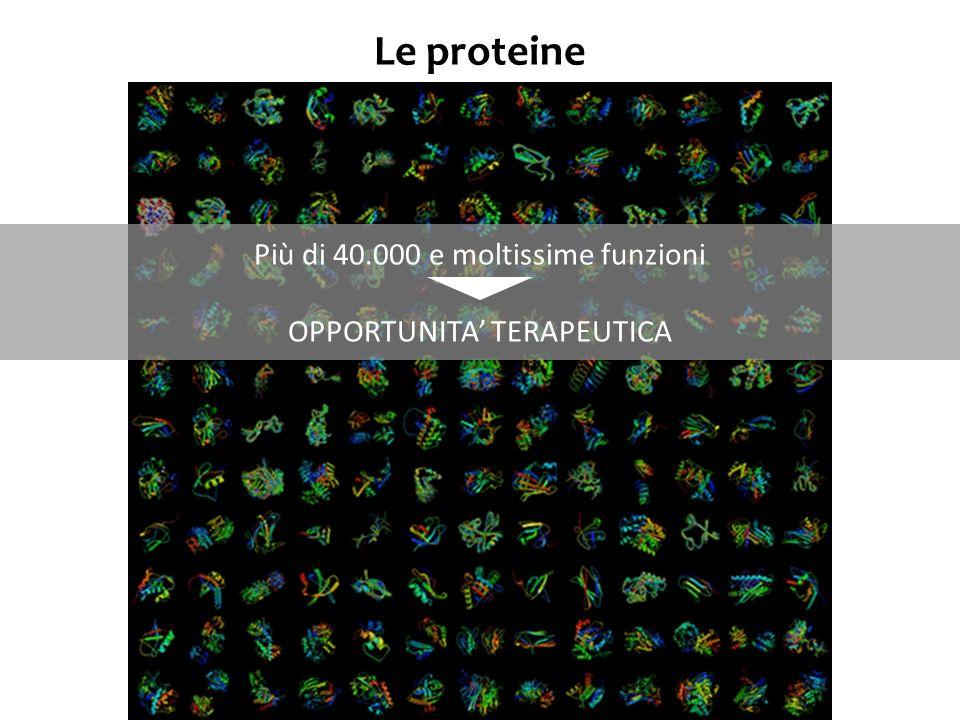 Vantaggi delle tecniche del DNA ricombinante nella produzione di proteine terapeutiche di classe I Insulina Beta- glucocere- brosidasi Dal 1922, purificata da pancreas bovini e porcini, e somministrata come iniezione in pazienti con diabete Problemi: - disponibilità di pancreas - costo della purificazione - reazioni immunologiche Prima del DNA ricombinante Dopo il DNA ricombinante Inizialmente purificata dalla placenta umana Problemi: - disponibilità di placenta (50.000 placente/anno/paziente) Vantaggi connessi a minor costi, maggiore produzione, eliminazione rischio di malattie trasmissibili associate con la purificazione Possibili modificazioni (es, sostituz di un aa, che migliora le performance) Dal 1982, prima proteina ricombinante commecializzata.