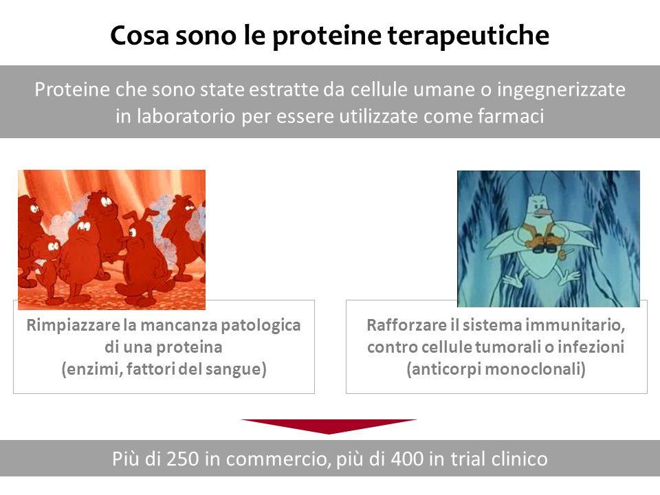 Nomenclatura degli anticorpi (-mab) Target site of antibodySource of antibody o(s)boneuhuman vi(r)viralomouse ba(c)bacterialarat li(m)immuneehamster le(s)infectious lesionsiprimate ci(r)cardiovascularxichimeric mu(l)musculoskeletalzuhumanized ki(n)interleukin as targetaxorat/murine hybrid co(l)colonic tumour me(l)melanoma ma(r)mammary tumour go(t)testicular tumour go(v)ovarian tumour pr(o)prostrate tumour tu(m)misc tumour neu(r)nervous system tox(a)toxin as target fu(ng)fungal Es.