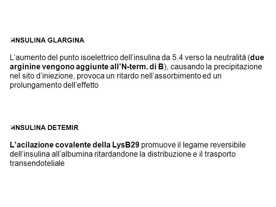 INSULINA GLARGINA Laumento del punto isoelettrico dellinsulina da 5.4 verso la neutralità (due arginine vengono aggiunte allN-term. di B), causando la