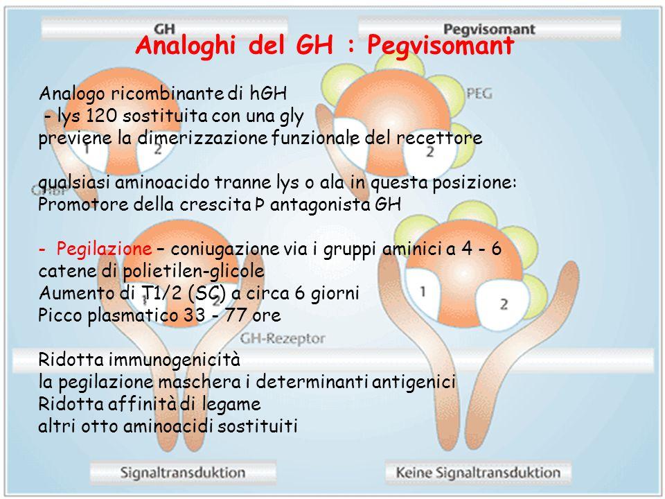 Analoghi del GH : Pegvisomant Analogo ricombinante di hGH - lys 120 sostituita con una gly previene la dimerizzazione funzionale del recettore qualsia
