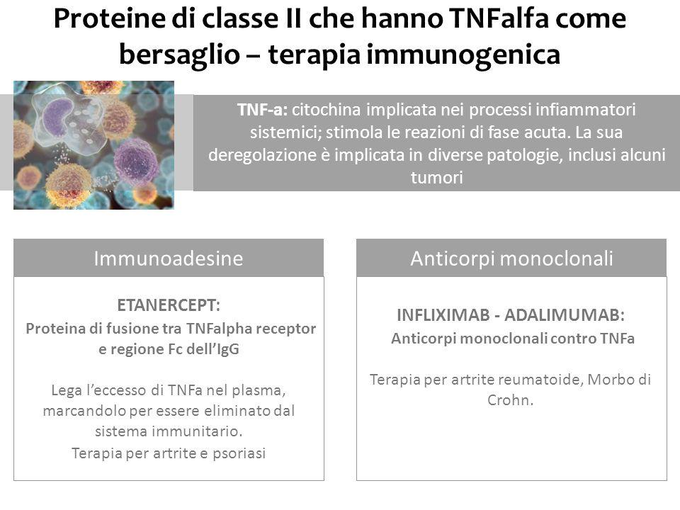 Proteine di classe II che hanno TNFalfa come bersaglio – terapia immunogenica TNF-a: citochina implicata nei processi infiammatori sistemici; stimola