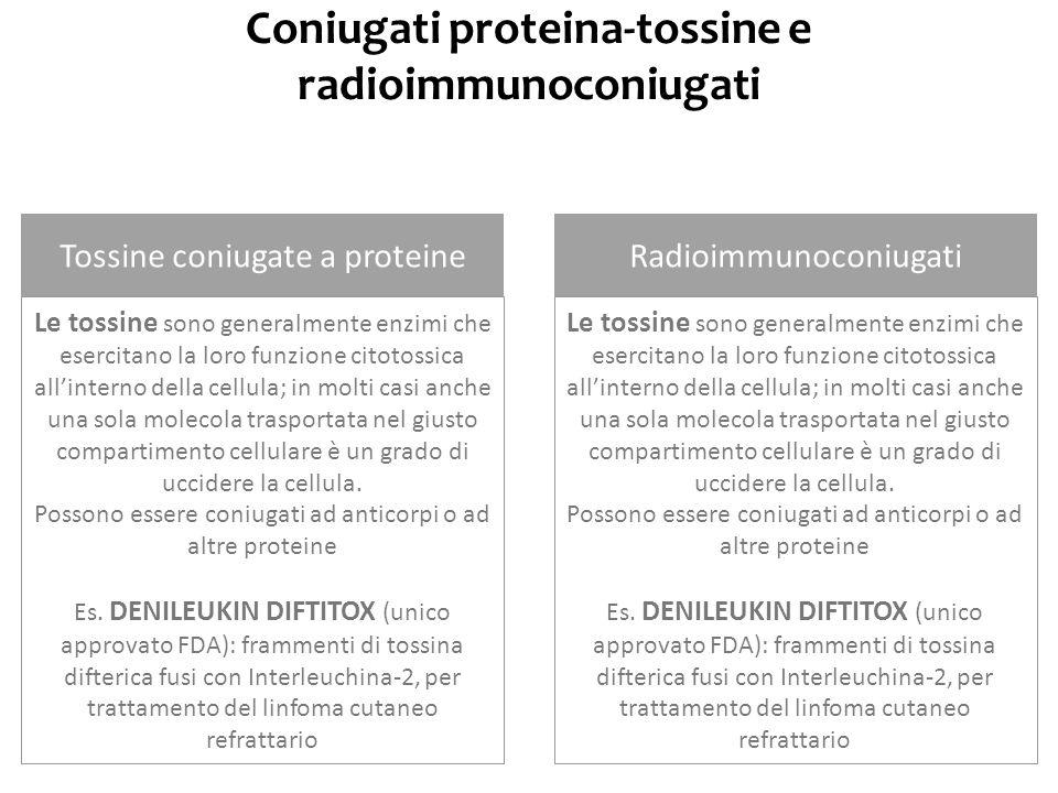 Coniugati proteina-tossine e radioimmunoconiugati Tossine coniugate a proteineRadioimmunoconiugati Le tossine sono generalmente enzimi che esercitano