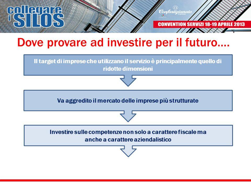 Dove provare ad investire per il futuro…. Il target di imprese che utilizzano il servizio è principalmente quello di ridotte dimensioni Va aggredito i