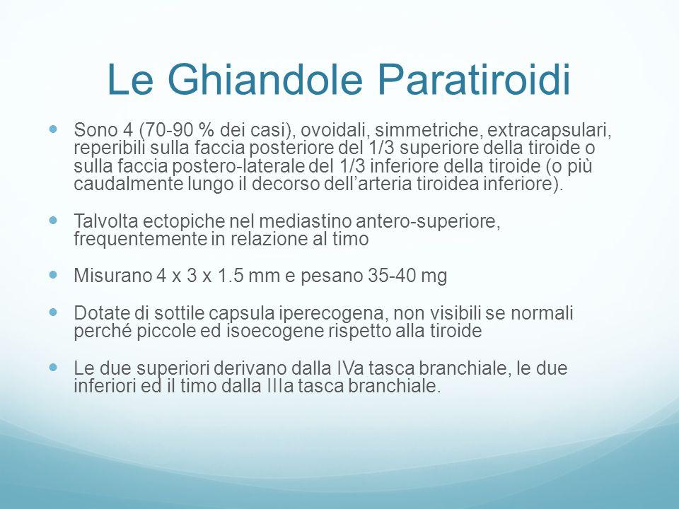 Le Ghiandole Paratiroidi Sono 4 (70-90 % dei casi), ovoidali, simmetriche, extracapsulari, reperibili sulla faccia posteriore del 1/3 superiore della tiroide o sulla faccia postero-laterale del 1/3 inferiore della tiroide (o più caudalmente lungo il decorso dellarteria tiroidea inferiore).