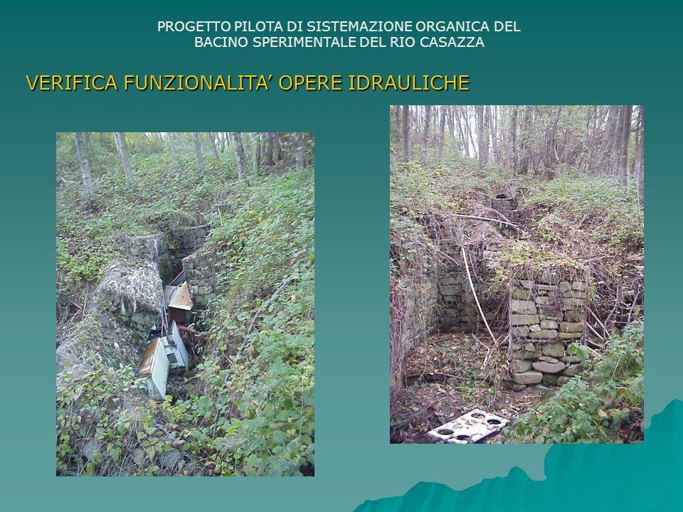 PROGETTO PILOTA DI SISTEMAZIONE ORGANICA DEL BACINO SPERIMENTALE DEL RIO CASAZZA VERIFICA FUNZIONALITA OPERE IDRAULICHE