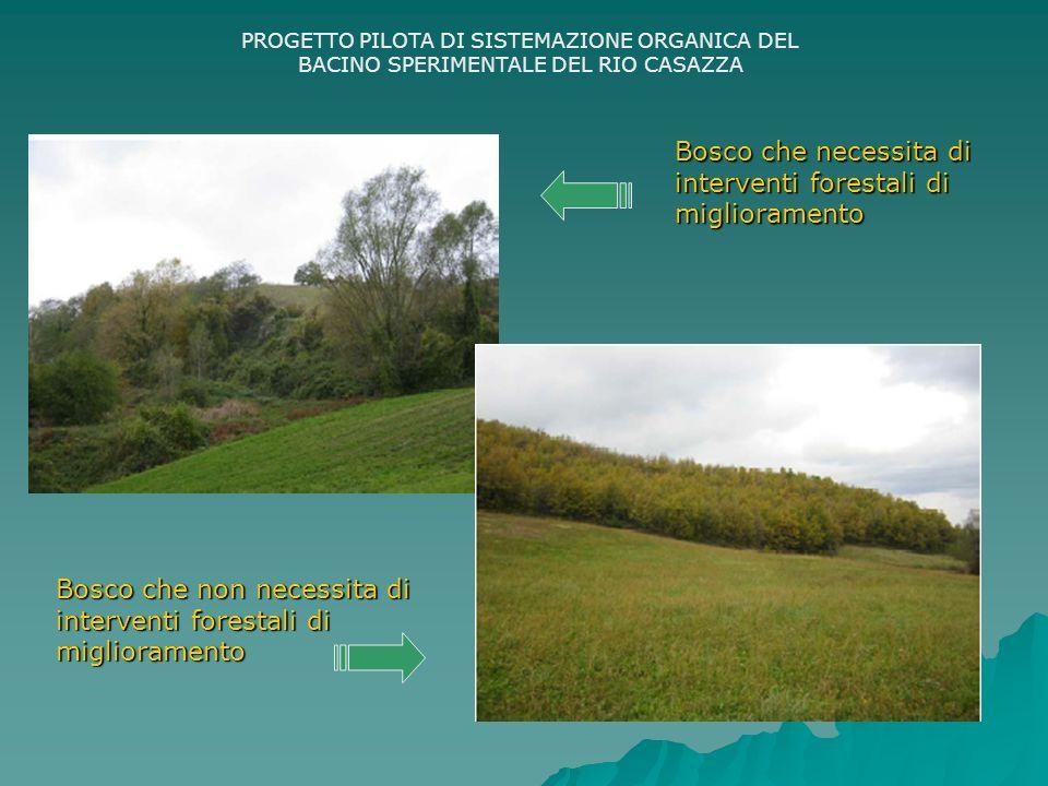 PROGETTO PILOTA DI SISTEMAZIONE ORGANICA DEL BACINO SPERIMENTALE DEL RIO CASAZZA Bosco che necessita di interventi forestali di miglioramento Bosco che non necessita di interventi forestali di miglioramento