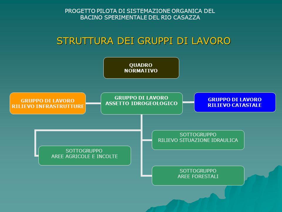PROGETTO PILOTA DI SISTEMAZIONE ORGANICA DEL BACINO SPERIMENTALE DEL RIO CASAZZA STRUTTURA DEI GRUPPI DI LAVORO GRUPPO DI LAVORO ASSETTO IDROGEOLOGICO SOTTOGRUPPO RILIEVO SITUAZIONE IDRAULICA SOTTOGRUPPO AREE AGRICOLE E INCOLTE SOTTOGRUPPO AREE FORESTALI GRUPPO DI LAVORO RILIEVO INFRASTRUTTURE GRUPPO DI LAVORO RILIEVO CATASTALE QUADRO NORMATIVO