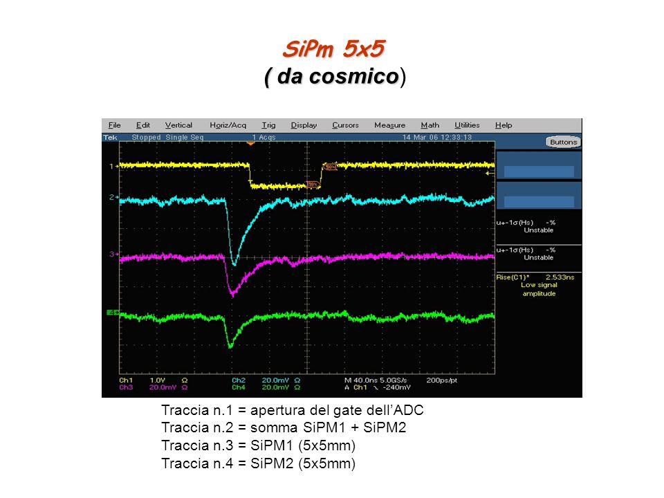 SiPm 5x5 ( da cosmico SiPm 5x5 ( da cosmico) Traccia n.1 = apertura del gate dellADC Traccia n.2 = somma SiPM1 + SiPM2 Traccia n.3 = SiPM1 (5x5mm) Tra