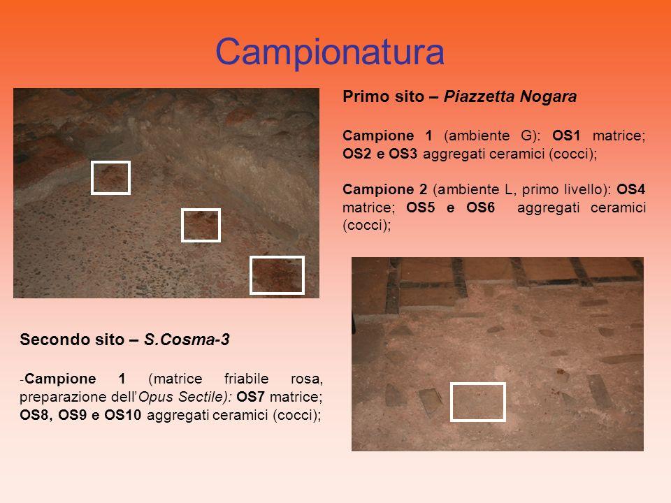 Primo sito – Piazzetta Nogara Campione 1 (ambiente G): OS1 matrice; OS2 e OS3 aggregati ceramici (cocci); Campione 2 (ambiente L, primo livello): OS4 matrice; OS5 e OS6 aggregati ceramici (cocci); Campionatura Secondo sito – S.Cosma-3 - Campione 1 (matrice friabile rosa, preparazione dellOpus Sectile): OS7 matrice; OS8, OS9 e OS10 aggregati ceramici (cocci);