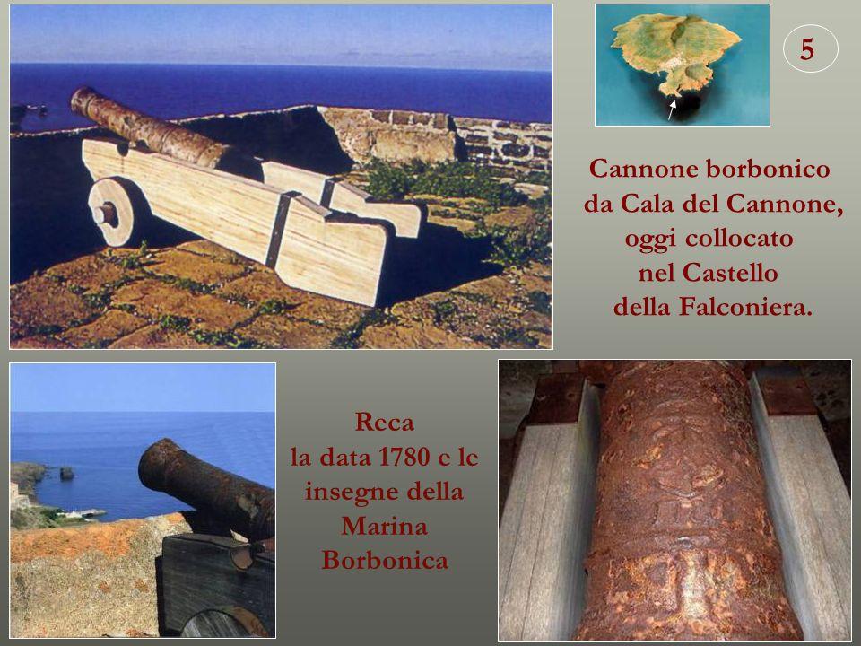 5 Cannone borbonico da Cala del Cannone, oggi collocato nel Castello della Falconiera. Reca la data 1780 e le insegne della Marina Borbonica