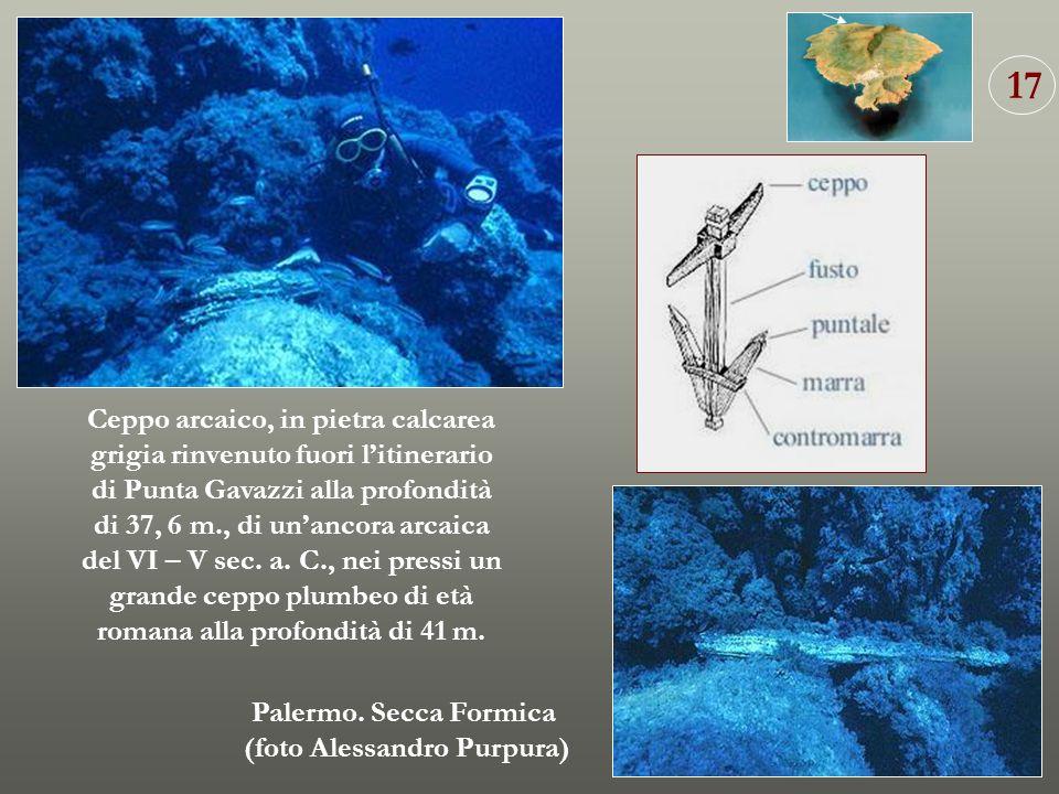 Ceppo arcaico, in pietra calcarea grigia rinvenuto fuori litinerario di Punta Gavazzi alla profondità di 37, 6 m., di unancora arcaica del VI – V sec.
