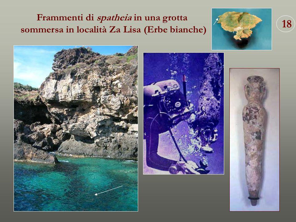 18 Frammenti di spatheia in una grotta sommersa in località Za Lisa (Erbe bianche)